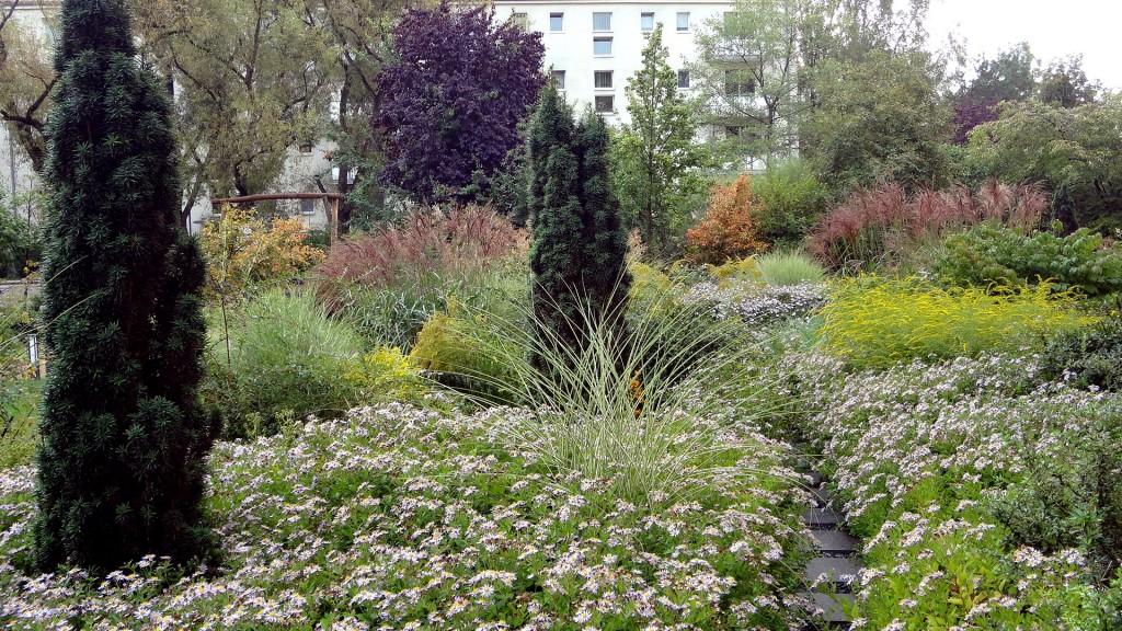 Bepflanzung Wohnanlage in Potsdam